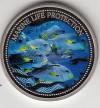 Palau 1$ Farbmünze 2004  Süßlippe