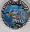 Palau 1$ Farbmünze 2005  Rotfeuerfisch
